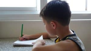 Boy writting words (taken from the Internet)