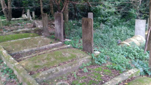 The tombs in Laohong village before they were dug up.