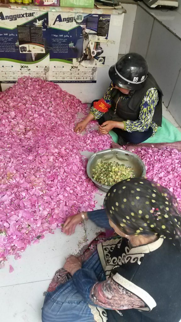 Tin-helmeted, red-arm-banded and bullet proof-vested rose petal sorter in Hotan. Summer 2018. These days only elderly women are permitted to wear head scarves