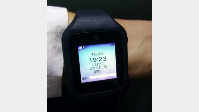 Image of the new type of electronic bracelet (supplied by an insider source)
