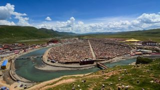 Persecution and Sexual Abuse of Tibetan Buddhist Nuns by the CCP